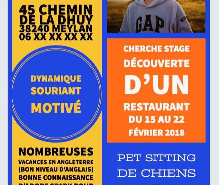 stage d u2019observation de 3 u00e8me   comment cr u00e9er un cv original